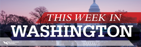 This Week in Washington Logo